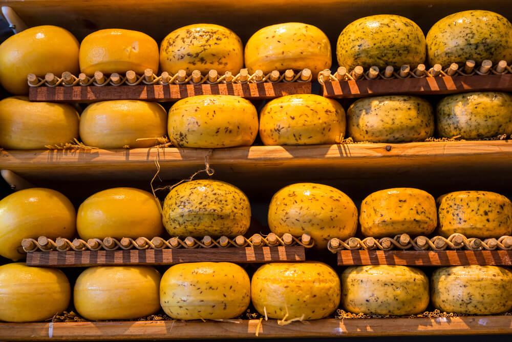 Amsterdam'da ne yenir peynir